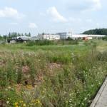 Freifläche im Gewerbegebiet Achenbach P1040205