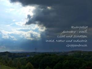Groppenbruch_Elfchen_24-08-2014