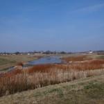 Hochwasserrückhaltebecken Mengede - Südliches Becken